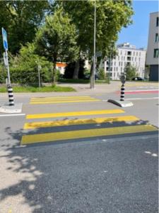 JTM-Fribourg_Promenades diagnostiques2
