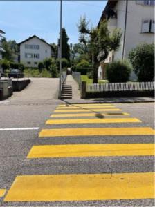 JTM-Fribourg_Promenades diagnostiques3